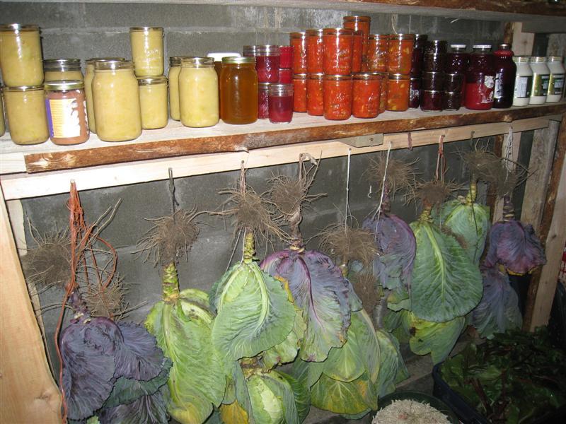 6 low budget diy root cellar ideas homestead survival