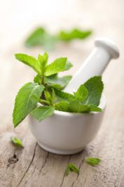 Peppermint contains compounds that relax the airways and open congested sinuses and nasal passages. Photo by dusk/Fotolia