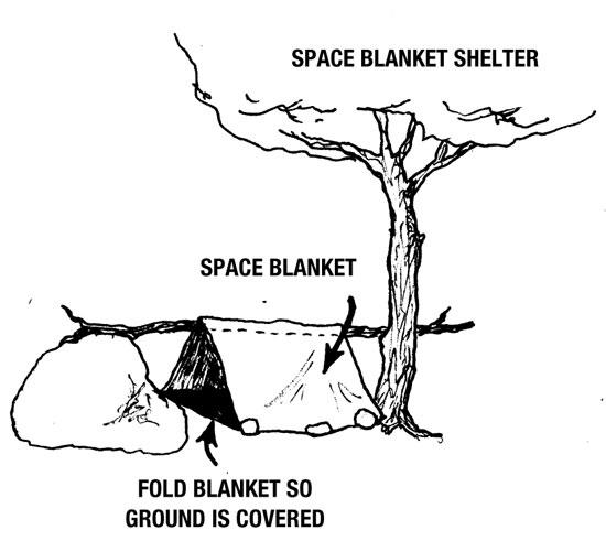 Shelter7
