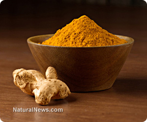 Turmeric-Root-Curcumin-Powder
