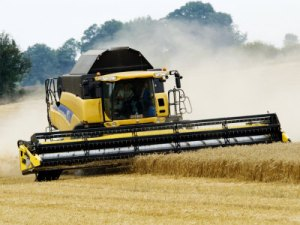 page-martin-yellow-new-holland-combine-harvester-harvesting-wheat-field-uk
