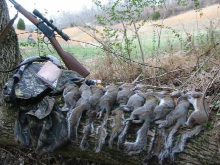 518_Squirrel_hunt_002