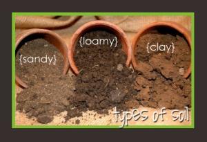 types-of-soil